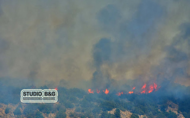 Πυρκαγιά στον Αμαριανό Αργολίδας