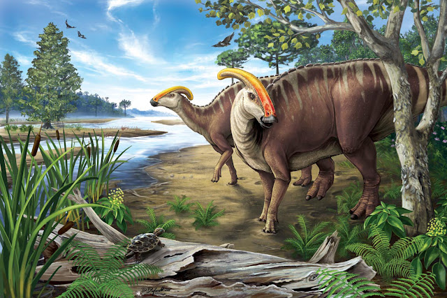 300 Teeth? Duck-billed dinosaurs would have been dentist's dream