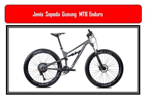 Jenis Sepeda Gunung MTB Enduro