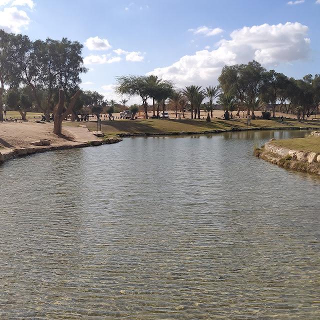 בריכת מים פארק אשכול