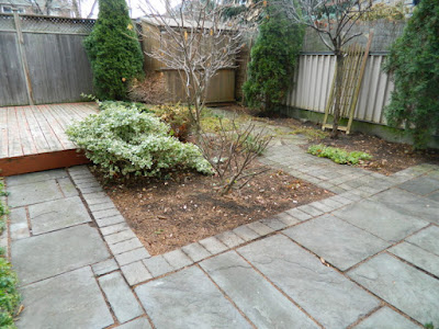 York Humewood Backyard Fall Cleanup After by Paul Jung Gardening Services--a Toronto Gardening Company