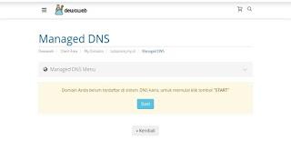 start update dns management