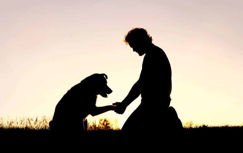 قصة سيدة ساعدت شاب وحيد معه جرو وبعد عدة سنوات قابلته