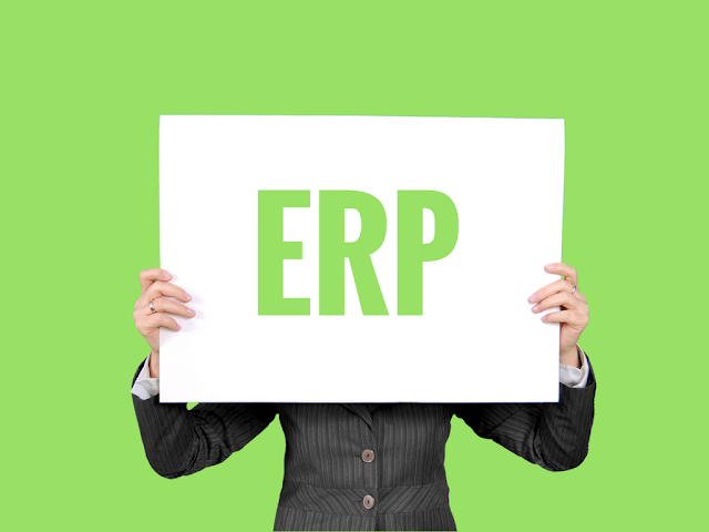 ERP System For Small Businesses