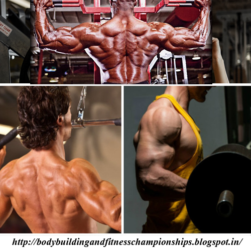 Best Morning Exercise for Gaining - Bodybuilding and Fitness Championships
