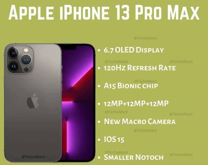 iPhone 13 Pro Max-IGtechiemant