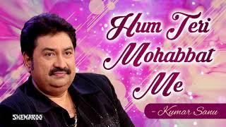 Hum Teri Mohabbat Mein Lyrics - Kumar Sanu - Hindi Song