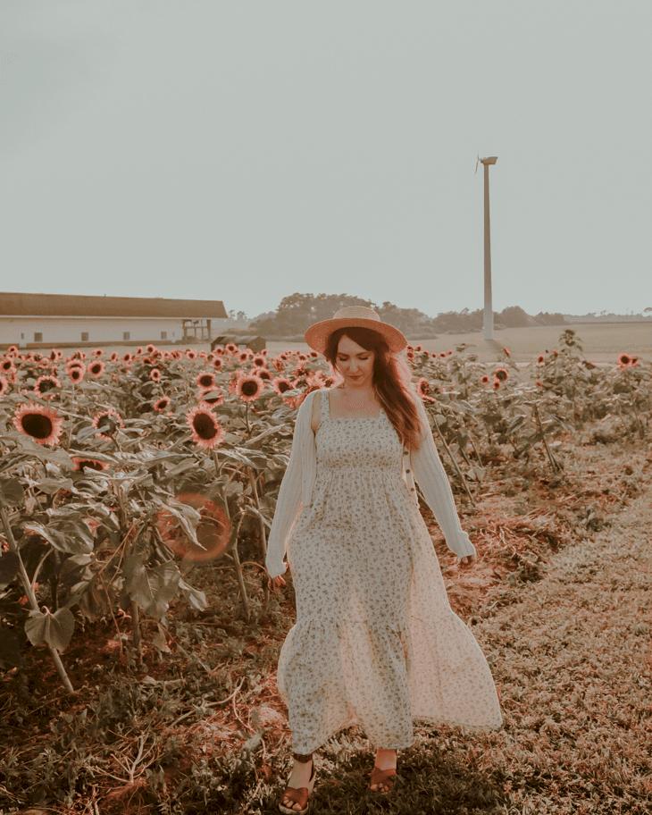 Pindar Vineyards sunflower field, Long Island NY - Sunflower fields Long Island - Sunflower fields near me