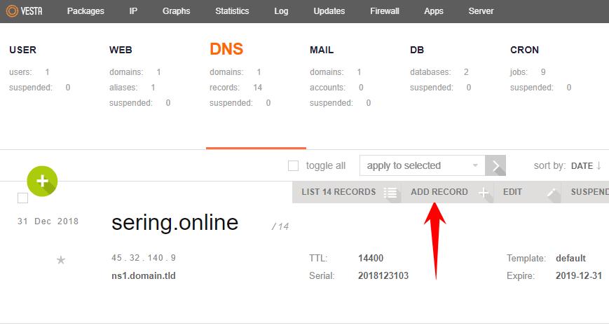 DNS SPF Record VestaCP