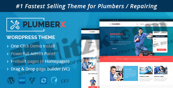 Plumber v2.51-Word Press Theme Construction and Repairing