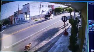 Vídeo mostra momento em que mulher e cavalo são atropelados, no interior da Paraíba