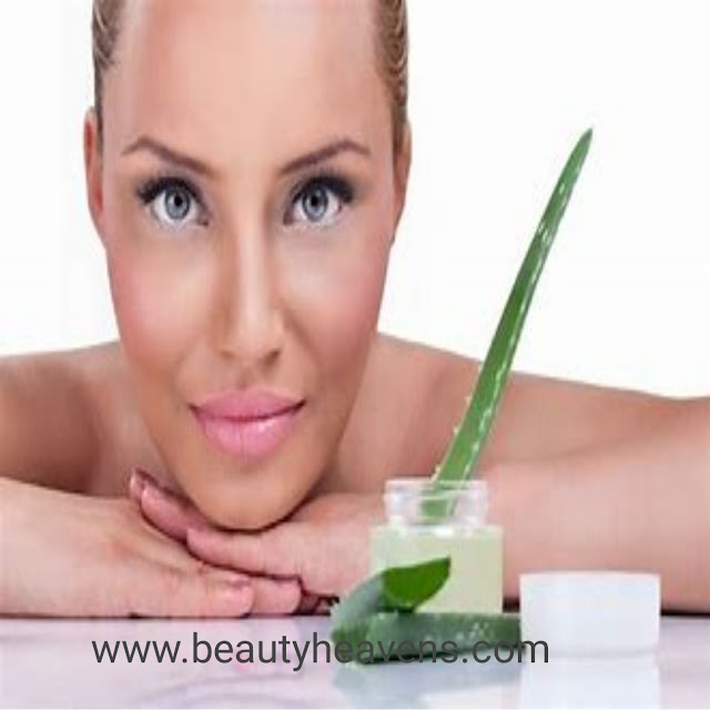 5 Ways to Care for Oily Skin with Aloe Vera   Home facials for oily skin.