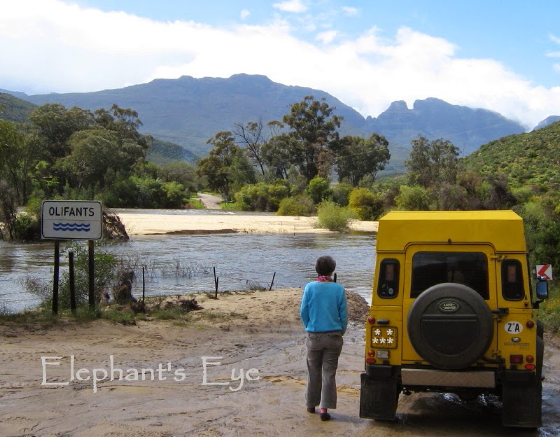 Olifants River 'crossing' near Clanwilliam in September 2008