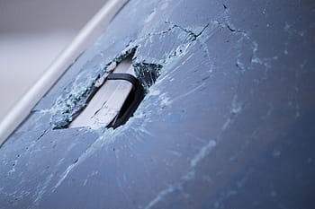 FISH SMASHES WINDSHIELD; WILL INSURANCE COVER IT?