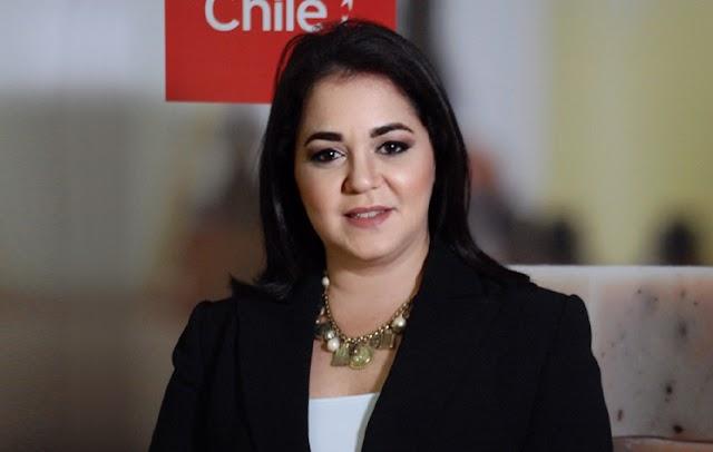 Chile conecta proveedores para el sector silvoagropecuario con República Dominicana y el Caribe