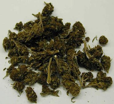 jak wygląda marihuana do palenia