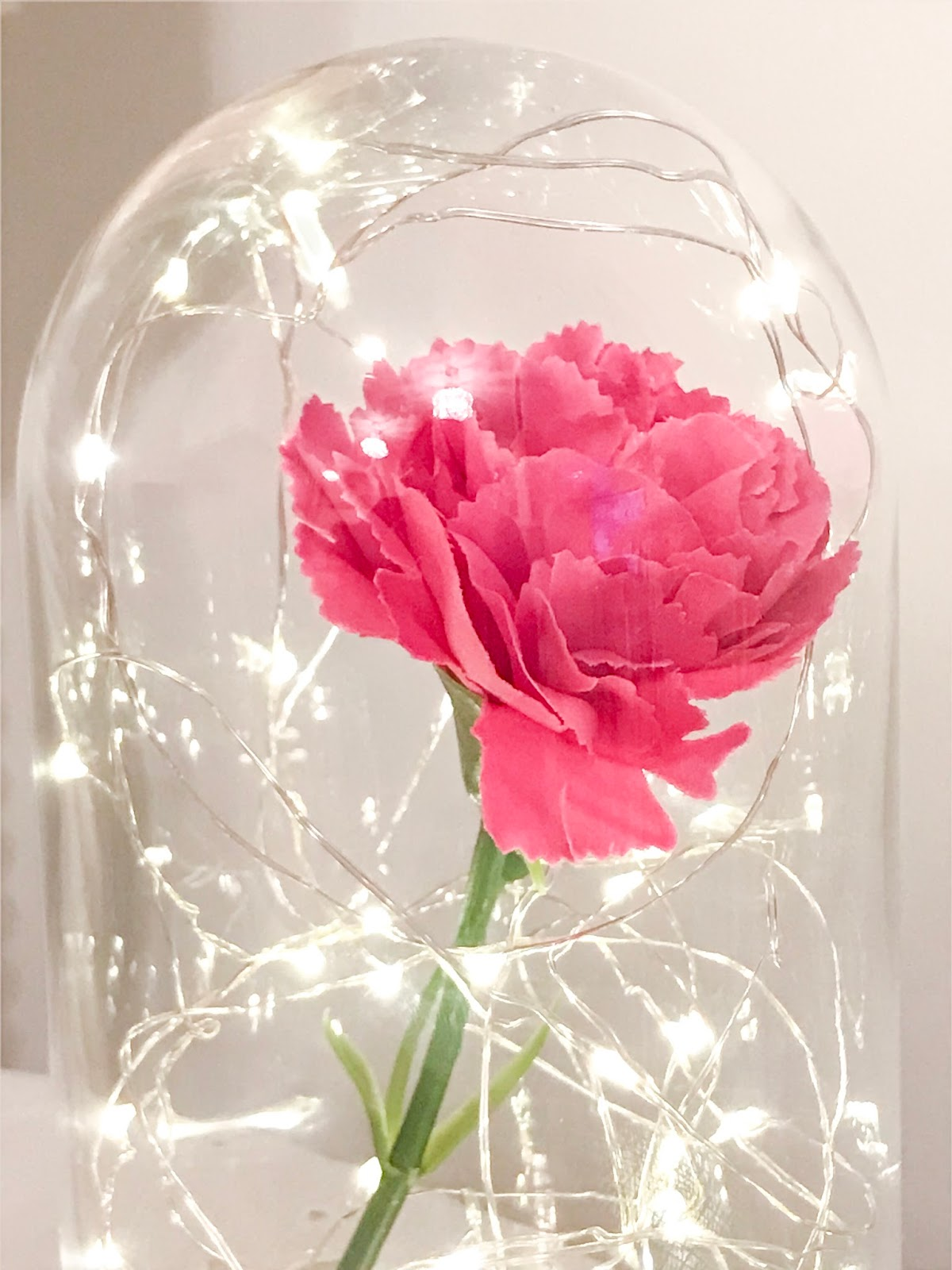How To Make Diy Beauty The Beast Inspired Bell Jar For Under 10