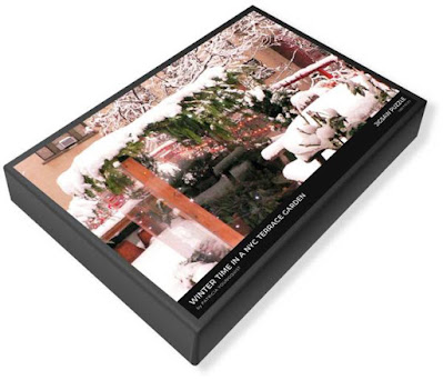 """This image of my puzzle's (""""Winter Time In A New York City Terrace Garden"""") packaging is from Fine Art America @ https://fineartamerica.com/featured/winter-time-in-a-nyc-terrace-garden-patricia-youngquist.html?product=puzzle&puzzleType=puzzle-20-28"""