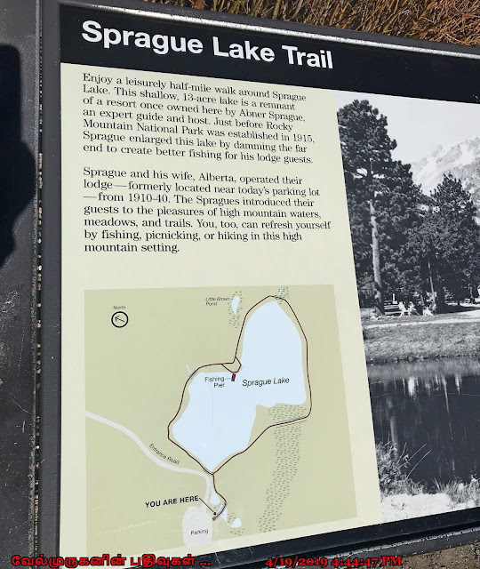 Rocky Mt Sprague Lake Trail