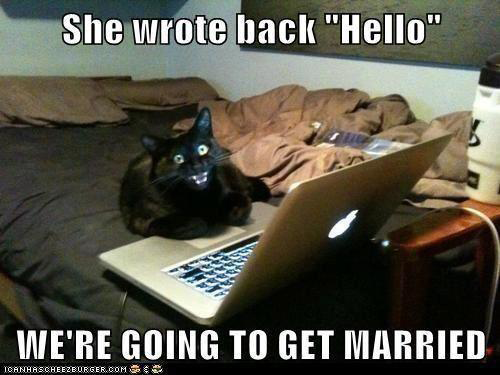 Funniest Animal Memes In The World : Most funny animal memes and humor pics quotes and humor
