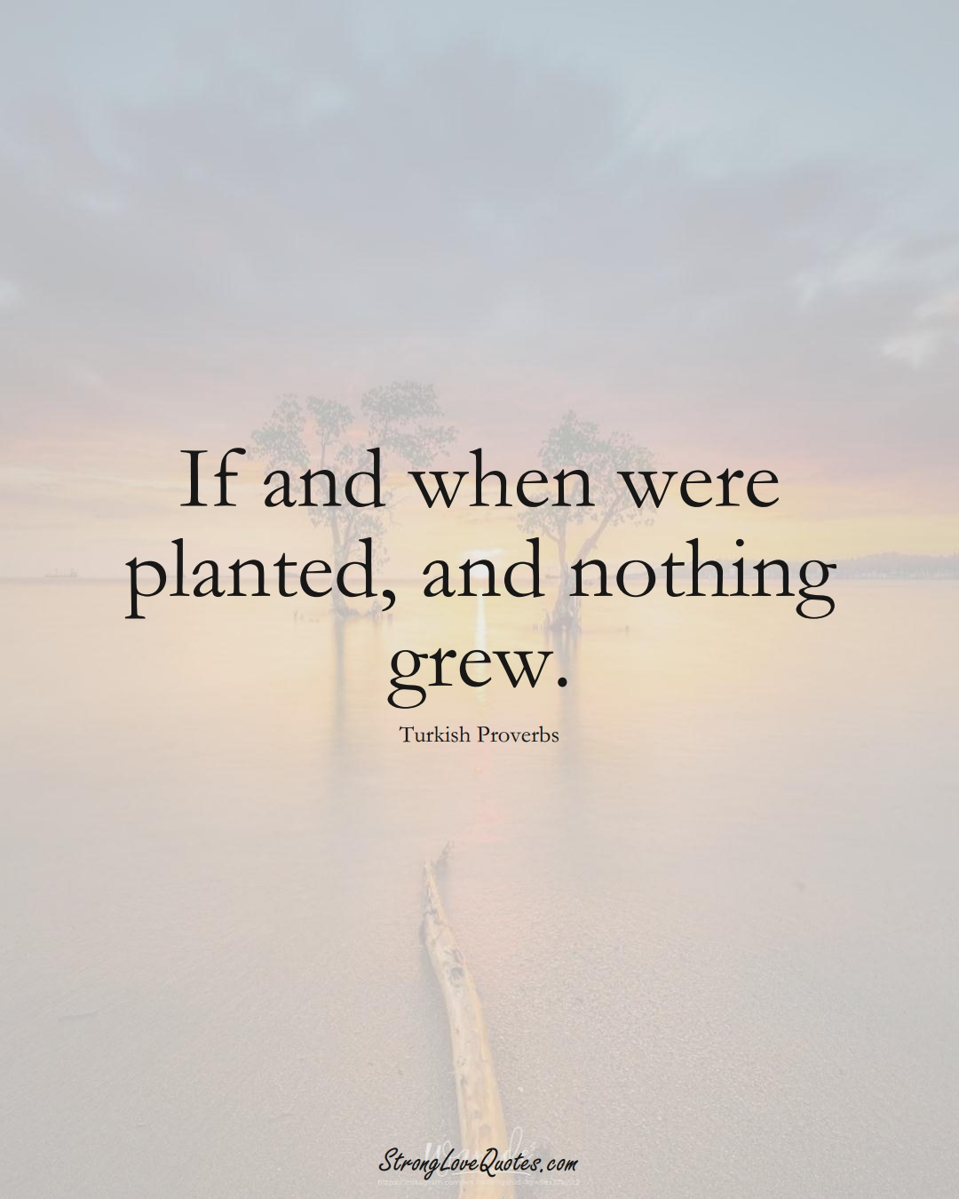 If and when were planted, and nothing grew. (Turkish Sayings);  #MiddleEasternSayings