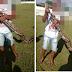 Altinho-PE: Jibóia de mais de dois metros é capturada na Vila Nova