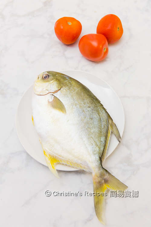 金鯧魚和番茄 Golden Pomfret & Tomatoes