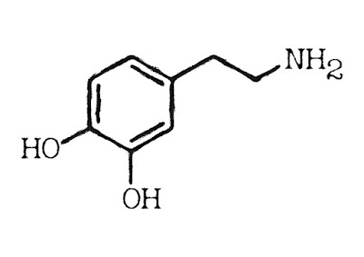 Dopamina i motywacja