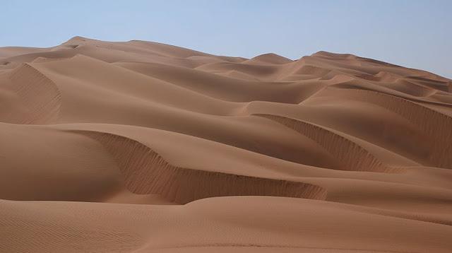 różnorodność biologiczna pustynia
