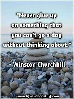 never give up on something quote.