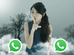 Mengapa WhatsApp Digunakan Banyak Orang? No. 6. Demi Cinta?