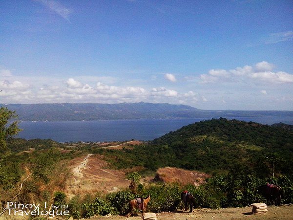 View of Taal Lake from the summit