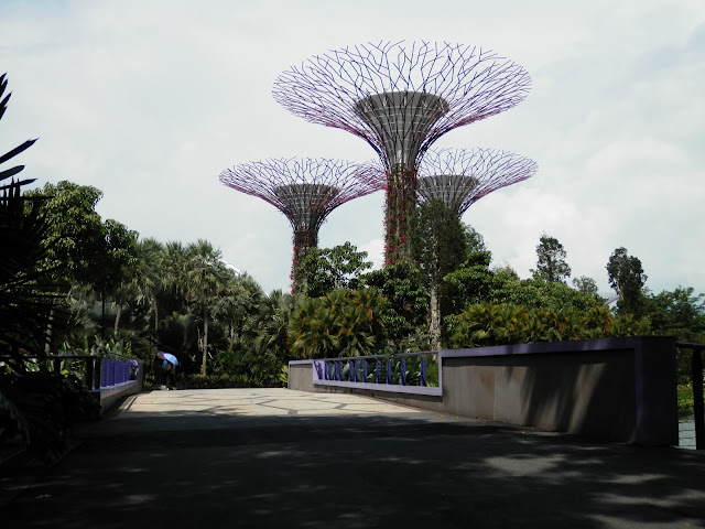 visite de Gardens by the Bay Singapour