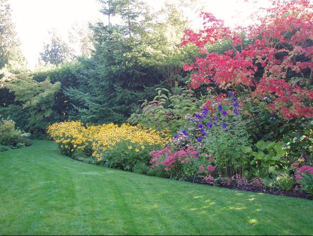 landscaping a suburban back yard flower beds