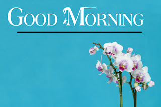 Good Morning Royal Images Download for Whatsapp Facebook12