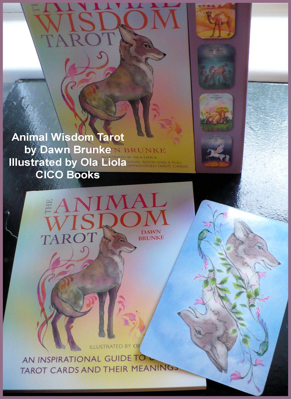 Tarot Notes A Journey Through My Tarot Decks The Magician: Tarot Notes: REVIEW: The Animal Wisdom Tarot