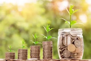 uang dan tanaman