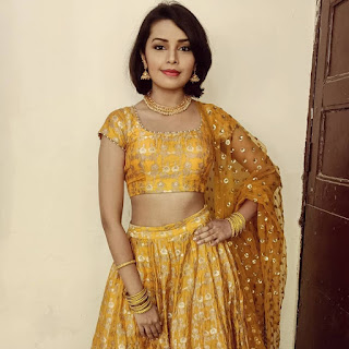 Shivani Rangole (Indian Actress) Biography, Wiki, Age, Height, Family, Career, Awards, and Many More