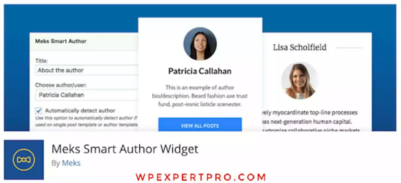 3. WP Post Author