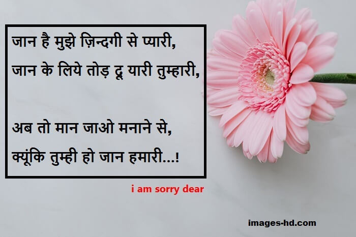Sorry quotes for best friend, gf, for bf