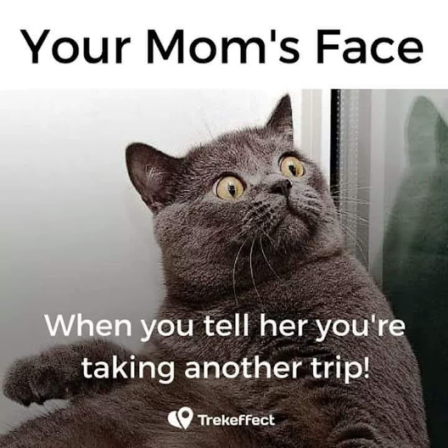 Travel funny memes