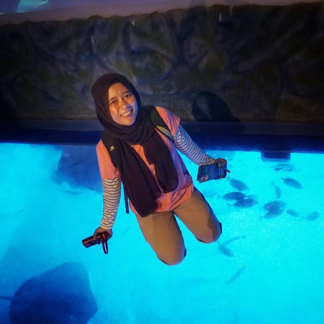 serunya main di jakarta aquarium