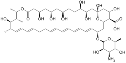 Mekanisme kerja Nistatin berikatan dengan sterol Nistatin