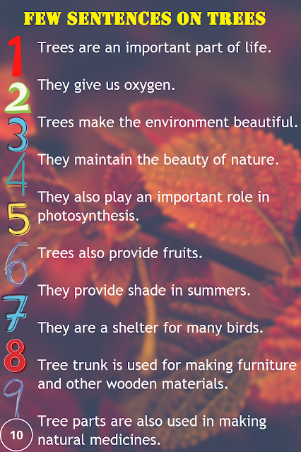 10 Sentences on Trees
