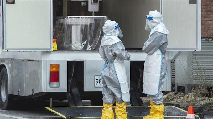 Tunisia, Senegal, Egypt and Algeria confirm cases of coronavirus