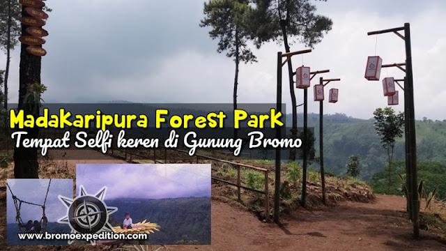 Madakaripura Forest Park - Bromo Expedition