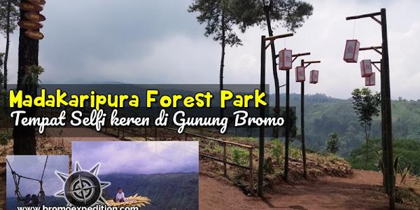 Baru! Madakaripura Forest Park, tempat selfi asyik suasana pegunungan