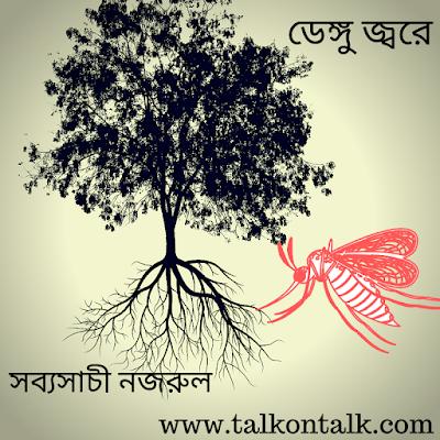 Mir Nazrul Islam