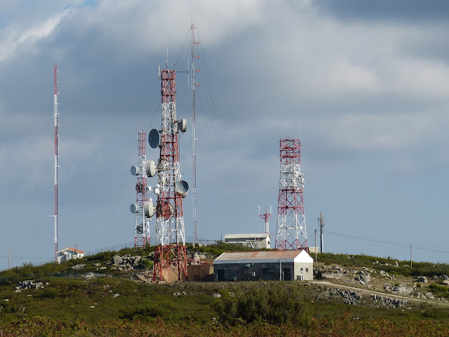 Electromagnetic frequency (EMF) radiations from mobile towers - Are they really harmful?