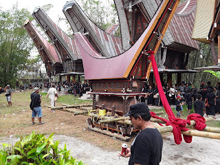 Visiter sulawesi du sud, Sulawesi central, sulawesi du nord